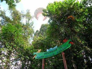 حدائق ماليزيا - الاماكن السياحيه في ماليزيا 21
